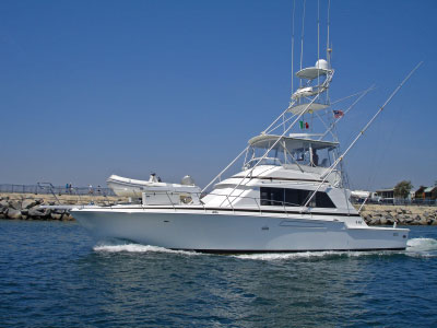 Deep sport shore fishing charters instigator sport fishing for Deep sea fishing outer banks nc